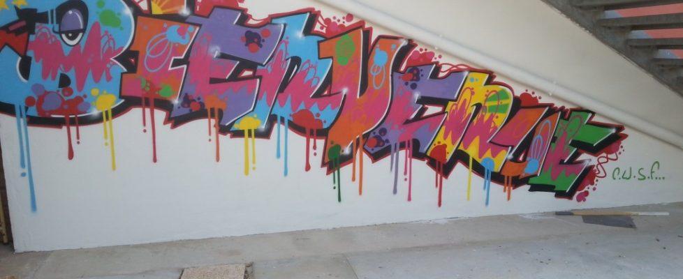 cusf-mediatheque-ile-de-thau-fresque